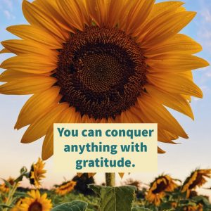 Conquer with gratitude